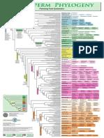 APG III (2009) .pdf