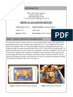 samantha migliore - hphs autopsy report   advanced