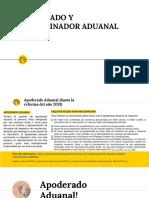 6.- Definisión de Apoderado y Dictaminador Aduanal; Régimenes schoology.ppt