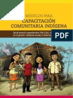 capacitacion-comunitaria-indigena-salud-sexual.pdf