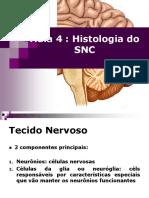 Aula 4 - Histologia Do SNC