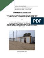 TdeR Consultoria EIA CS Pedregal Grande