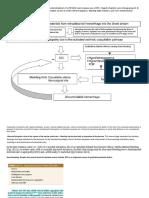 Abruptio Placentae Pathophysiology