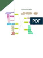 Mapa Mental PDF 2 HECTOR