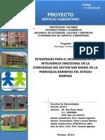 Servicio Comunitario Proyecto Ana Salas