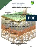 LABORES CULTURALES DE CULTIVOS.docx
