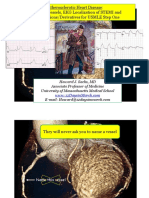 12Days Coronary Vessels and EKG Localization PDF