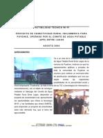 INFORME_TECNICO_PUYEHUE