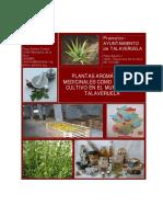 plantas medicinales y +.PDF