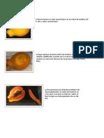Papaya Congelada