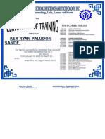 Training Certificate Auto2