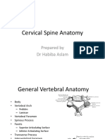 Anatomy of cervical spine.ppt