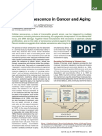 Cellular senescence in Cancer and Ageing.pdf