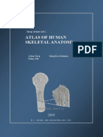 Anathomy atlas
