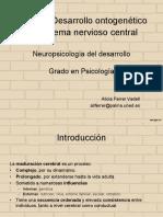 Tema2. Desarrollo ontogene_tico del SNC.pdf