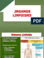 Organos Linfoides 2016 1