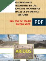 OBSERVACIONES MANIFIESTO AMBIENTAL.pdf