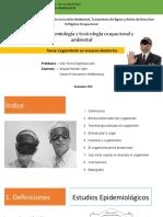 EPIDEMIOLOGIA-blinding in Randomised Trials-final