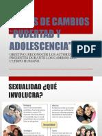 Hormonas y Cambios en La Pubertad