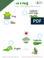 l2life_cycle_frog.pdf