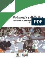 Pedagogia_y_Didactica.pdf