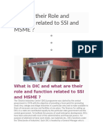 DIC and their Role and function related to SSI and MSME.doc