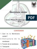 Clase 2. Membrana celular BiolCel. II-2018.pdf