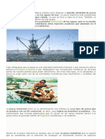 Pesca Maritima Maxi