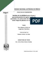 RJLI TESIS FINAL.pdf