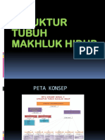 IPA Powerpoint