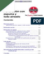 SPch06.PDF