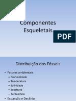 Aula Joelson - ComponentesEsqueletais.pdf