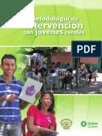 Metodología de Intervención Adepes 2012