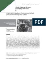 Índices de crecimiento en plantas de mora (Rubus alpinus Macfad) bajo diferentes sistemas de poda