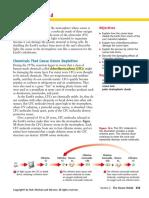 13-2 The Ozone Shield.pdf