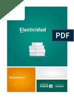 LECTURA 2 Elasticidad.pdf
