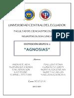 Neuropsicología AGNOSIAS Trabajo Final