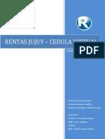 ManualCedulaFiscal_Contribuyente_V1
