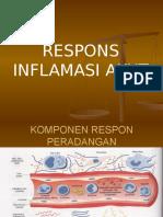 Respons Inflamasi Akut