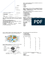 grado11-tallerconsolidado-150920154813-lva1-app6891.pdf