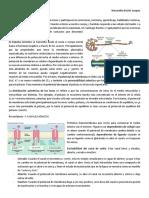 8. Fisiología neuronal.docx