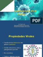 FIV.pdf
