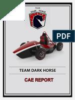 CAE REPORT.docx