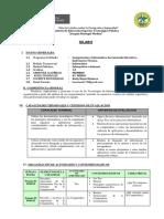 SILABO Y PROGRAMACION DE INFORMATICA E INTERNET