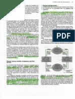 Diagrama de flujo circular.pdf