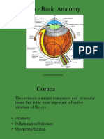 2019 Dr. Halida Disease of the Cornea (1)