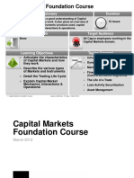 Capital markets foundation course