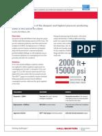 H011859-GoM-IC.pdf