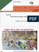 t 1 Bioquímica Enfermería