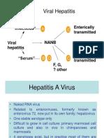 Hepatitis Viruses 1(Doç Dr Kenan Midilli-Microbiology)